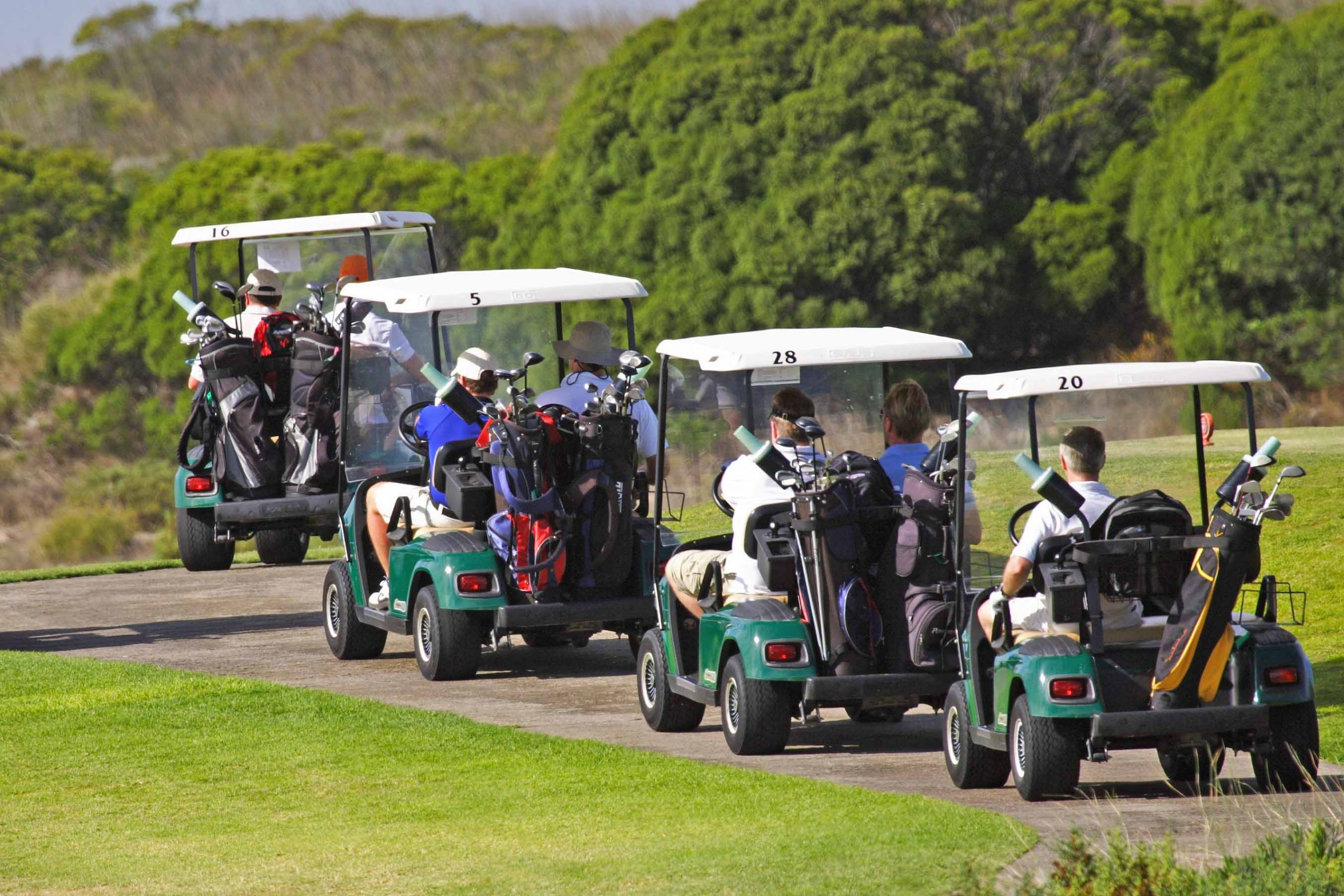 PuttBANDIT   Visibly Better Putting   Row of moving golf carts